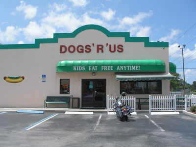 [The almost famous Dogs 'R' Us]
